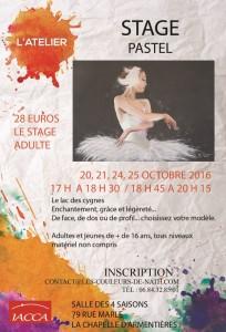 stage-pastel-lac-des-cygnes